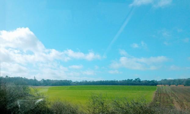 france field